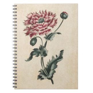 Cadernos Espiral Ilustração floral botânica da papoila do vintage