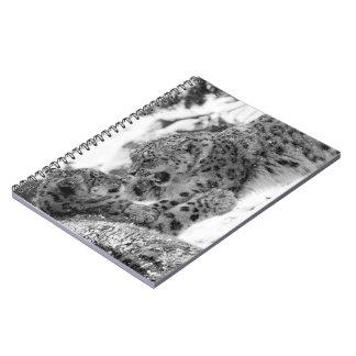 Cadernos Espiral Irmãos Jogo-De combate do leopardo de neve