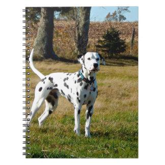 Cadernos Espiral Kevin o Dalmatian