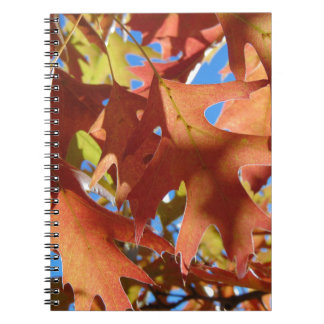 Cadernos Espiral Luz solar através das folhas de outono