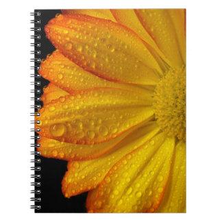 Cadernos Espiral Margarida