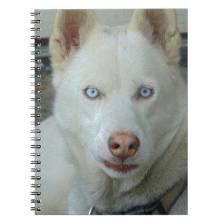 Cadernos Espiral Meus olhos de Mona lisa