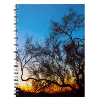 Cadernos Espiral Nascer do sol da silhueta da árvore de Palo Verde