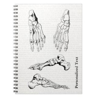 Cadernos Espiral Ossos humanos da anatomia da arte médica velha do