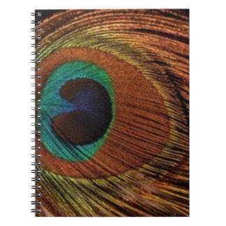 Cadernos Espiral peacocks-plume-1red e ouro