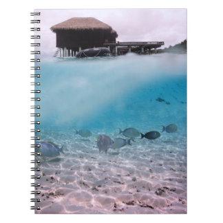 Cadernos Espiral Peixes de mergulho do coral da praia das aventuras