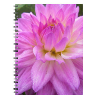 Cadernos Espiral Prazer roxo