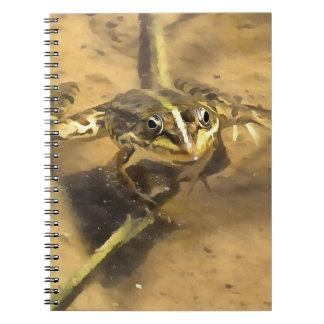 Cadernos Espiral Sapo do pântano