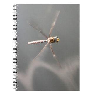 Cadernos Espiral Sorriso da libélula