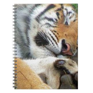 Cadernos Espiral Tigre do sono