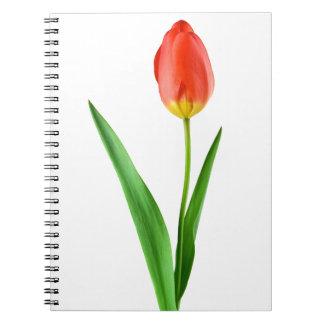 Cadernos Espiral tulipa