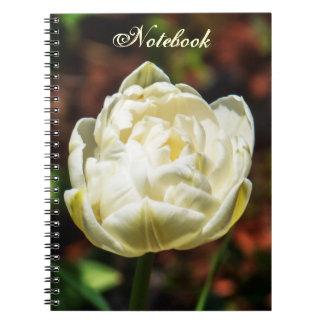 Cadernos Flor de florescência branca elegante