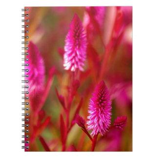 Cadernos Flor Pastel