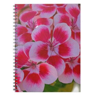 Cadernos Flores cor-de-rosa do primavera