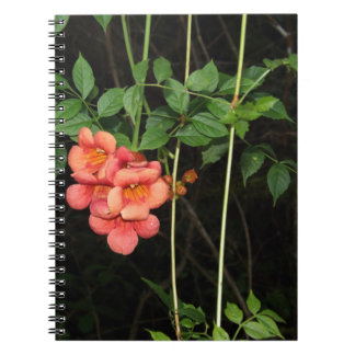 Cadernos Flores da meia-noite