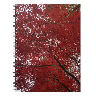 Cadernos Folhas de outono vermelhos marrom do Outono da
