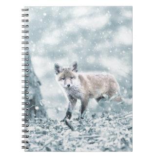 Cadernos fuchs