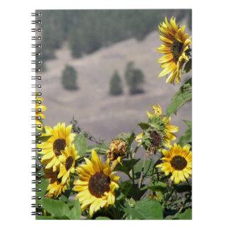 Cadernos Girassóis nas montanhas