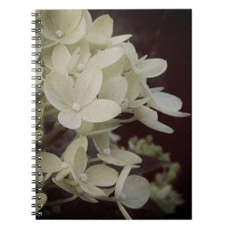 Cadernos Hydrangea sonhador floral
