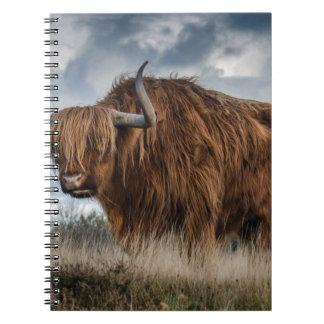 Cadernos Iaques de Brown no verde e no campo de grama de