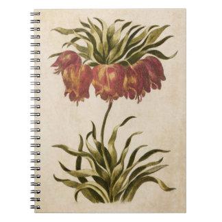 Cadernos Imperial de coroa floral botânico do vintage