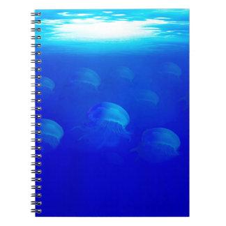 Cadernos Medusa azuis do grupo na natação de Oceano