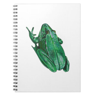 Cadernos O Adenture de Kermit