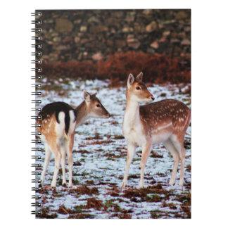 Cadernos O casal (cervos)