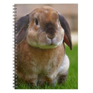 Cadernos O minni do coelho lop