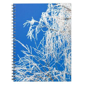 Cadernos Os ramos da árvore durante o inverno