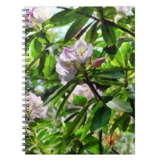 Cadernos Os rododendros estão na flor