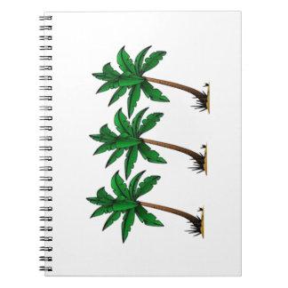 Cadernos Palmas de balanço