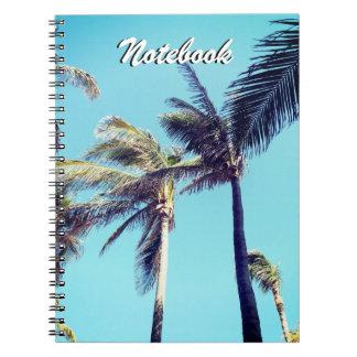 Cadernos Palmeiras e céu azul