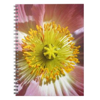 Cadernos Papoila islandêsa cor-de-rosa
