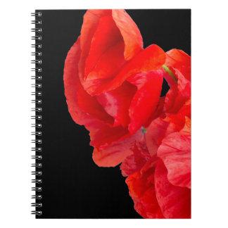 Cadernos Papoilas