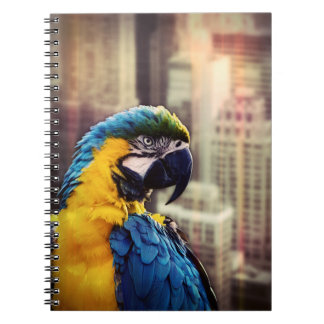Cadernos Pássaro na cidade