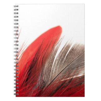 Cadernos Pena vermelha