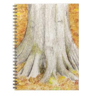 Cadernos Pés da faia