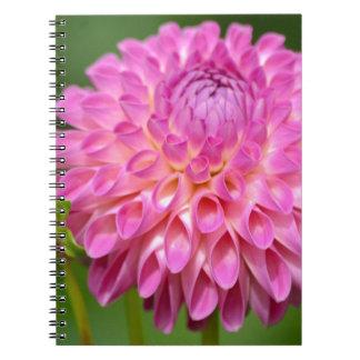 Cadernos Poster cor-de-rosa beneficiente da dália e do