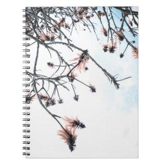 Cadernos Primavera