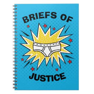 Cadernos Resumos do capitão Cuecas | de justiça