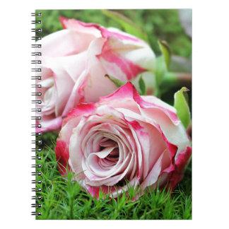 Cadernos rosas