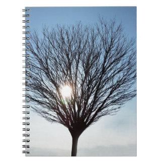 Cadernos sol do inverno