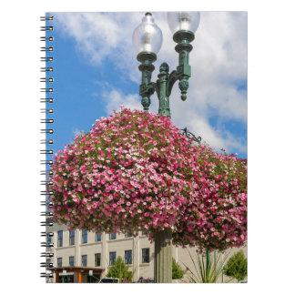 Cadernos Suspensão e plantas Potted em Lynden Washington