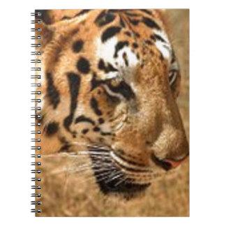 Cadernos Tigre que desengaça em India