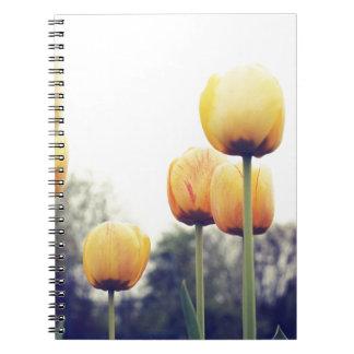 Cadernos tulipas
