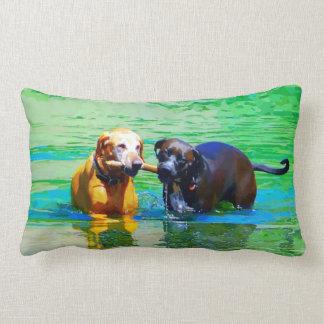 Cães Almofada Lombar