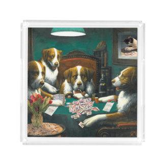 Cães do Mah Jongg que jogam a bandeja do póquer
