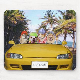 Cães engraçados Cruisin Mouse Pad