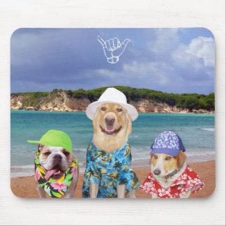 Cães engraçados na praia mouse pads